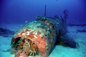 duiken op de salomon eilanden