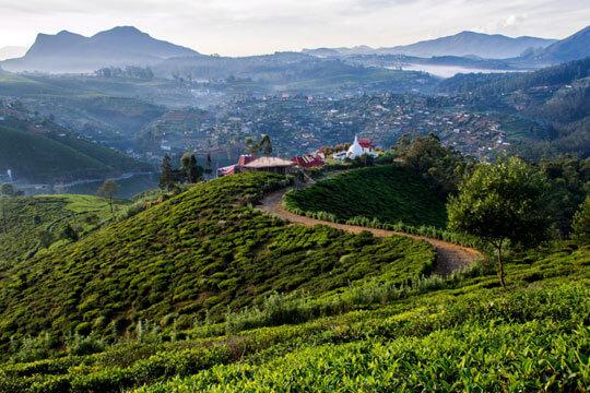 Sri Lanka Dorp