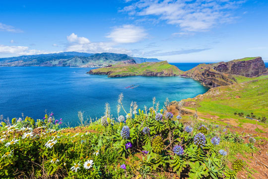 Madeira Natuur
