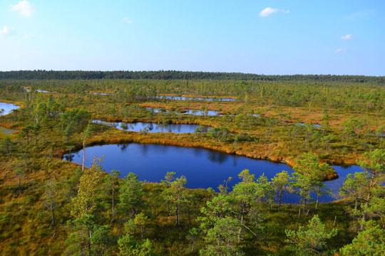 Natuurpark Litouwen